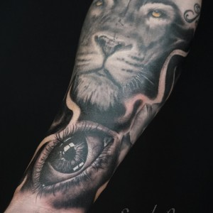 Eye-and-Lion-1.jpg